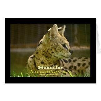 Tierserval-Katze Karte