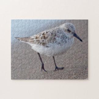 TiervogelShorebird 1 Puzzle
