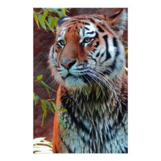 Tiger Büropapier