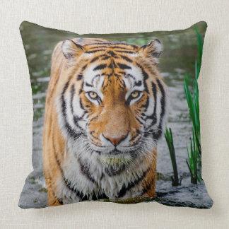Tiger-Druck-BaumwollWurfs-Kissen Kissen