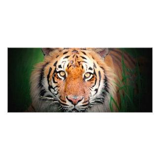 Tiger-Gestell-Karte Vollfarbige Werbekarte