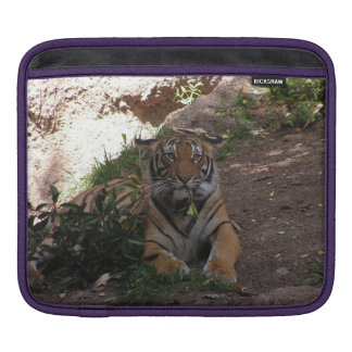 Tiger iPad Sleeves