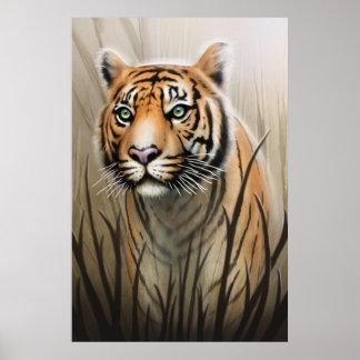 Tiger-Plakat Poster