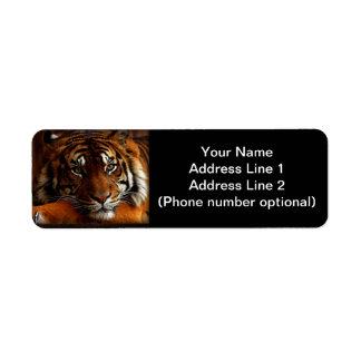 Tiger Rücksendeetikett