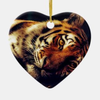 Tiger-Tierwild lebende tiere, die Makronahaufnahme Keramik Ornament