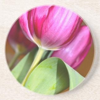 Tiptoe durch die Tulpen Sandstein Untersetzer
