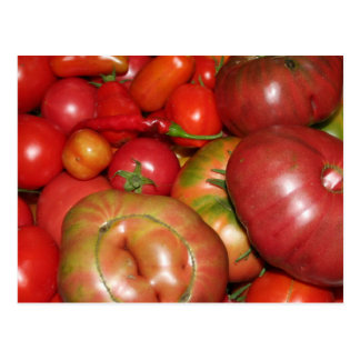 Tomate-Postkarte Postkarte