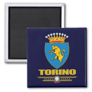Torino (Turin) Quadratischer Magnet