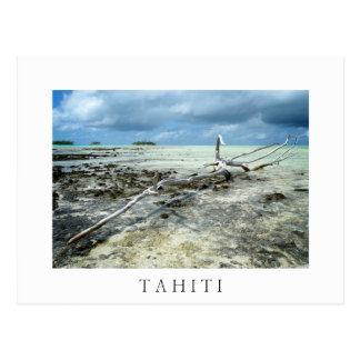 Totes Holz Tahiiti in der weißen Textpostkarte Postkarten