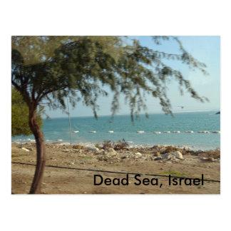 Totes Meer, Israel Postkarte