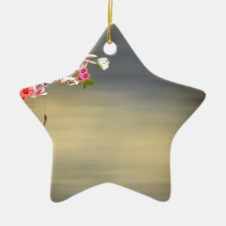 Touch von paradise.jpg keramik Stern-Ornament
