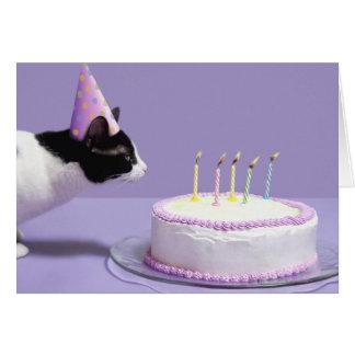 Tragender Geburtstagshut der Katze, der heraus Grußkarte