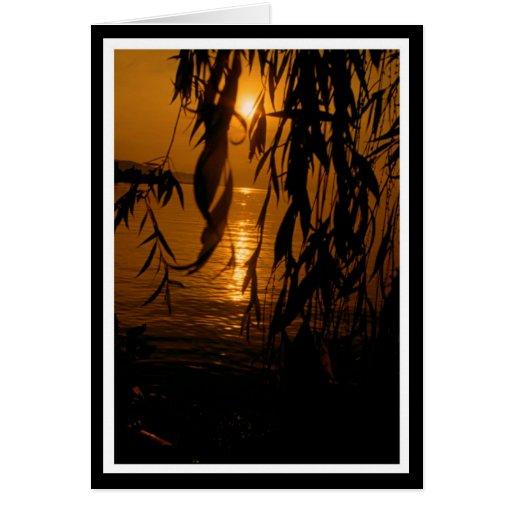 Trauerweide mit Sonnenuntergang 2 Karte