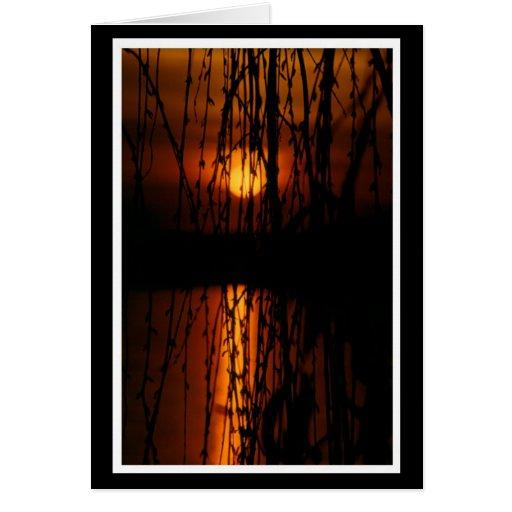 Trauerweide mit Sonnenuntergang Karte