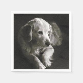 Traurige Schwarzweiss-Serviette des Hund| Papierserviette