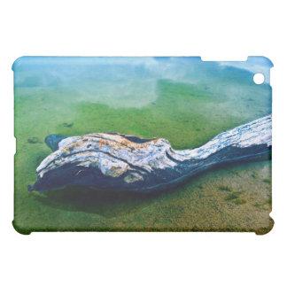 Treibender iPad Speck-Kasten iPad Mini Hülle