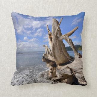 Treibholz auf der Küstenlinie des französischen Zierkissen