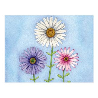 Trio der Gänseblümchen Postkarte