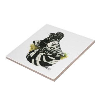 Trompeters-Tauben-dunkles Spritzen Keramikfliese