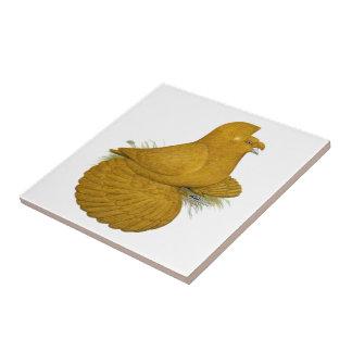 Trompeters-Tauben-Gelb-Selbst Fliese