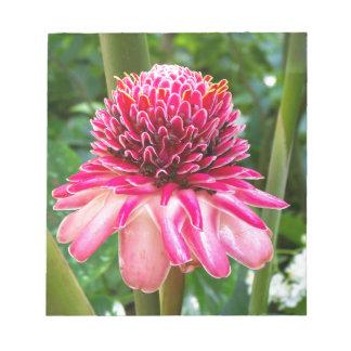 Tropische Blume des Fackel-Ingwers Notizblock