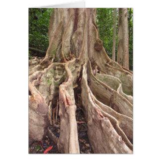Tropische Feigenbaum-Wurzeln Grußkarte