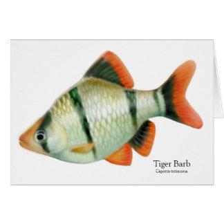 Tropische Fisch-Karte TigerBarb Grußkarte
