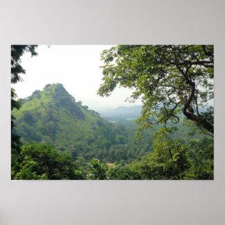 Tropische Gebirgslandschaft | Sri Lank Poster