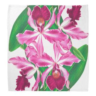 Tropische rosa Orchideen-BlumenblumenBandana Kopftuch