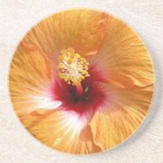 Tropischer orange Hibiskus Sandstein Untersetzer