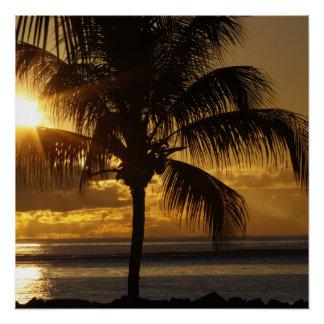 Tropischer Strand Perfektes Poster