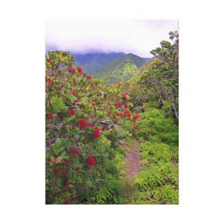 Tropischer Wanderweg Leinwand Druck