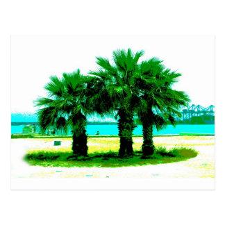 Tropisches Baum-Trio Postkarte