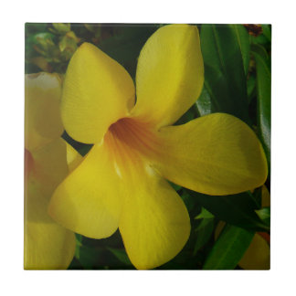 Tropisches Blumen der goldene Trompete-Blumen-II Kleine Quadratische Fliese