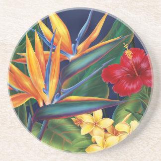Tropisches Paradies-hawaiisches Blumen Getränkeuntersetzer