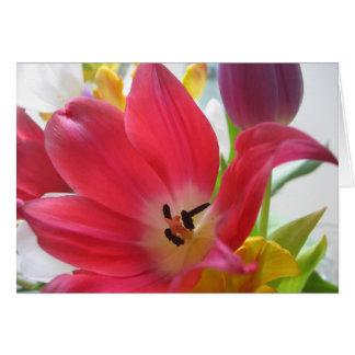 Tulpe-Blume Karte
