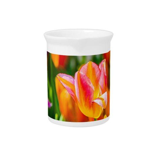 Tulpe-Blumen der verschiedenen Farben Getränke Pitcher