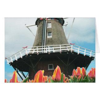 Tulpe-Blumen-Windmühle Karte