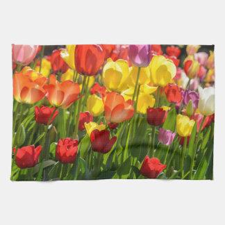 Tulpe-Garten im Früjahr Handtuch