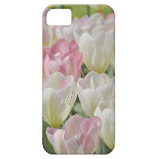 Tulpenblüten iPhone 5 Schutzhüllen