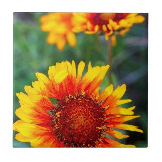 Umfassendes Blumenalias Braun mit Augen Susan im Fliese