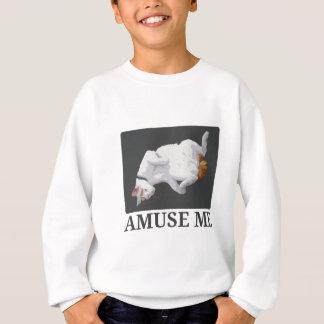 Unterhalten Sie mich Sweatshirt