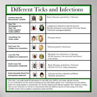 Unterschiedliches Ticken und Infektions-Diagramm Poster