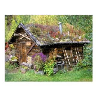USA, Alaska, Denali Nationalpark, Kantishna. Postkarte