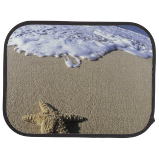 USA, Hawaii, Maui, Makena Strand, Starfish und Autofußmatte