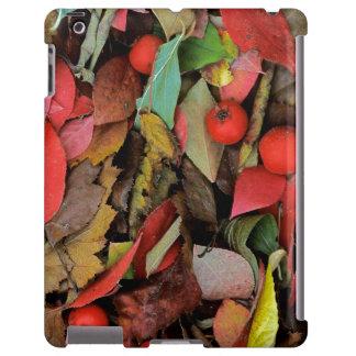 USA, Washington, Spokane Co., Weißdorn-Blätter iPad Hülle