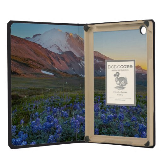 USA, Washington-Staat. Alpiner Lupine
