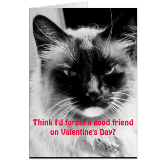 Valentinstag Lustige Katze Fu0026#252;r Freunde Karte