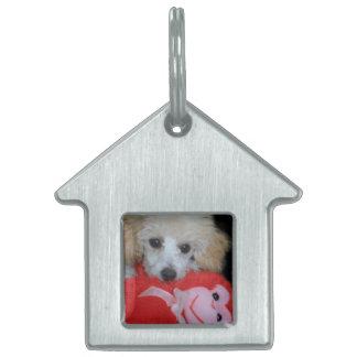 Valentinstag-Pudel-Hund Tiermarke