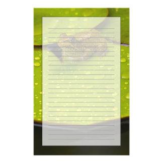 Vereinigte Staaten, Maryland, Westminster, Briefpapier